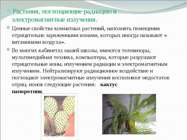 Растения, поглощающие радиацию и электромагнитные излучения. Ценные свойства...