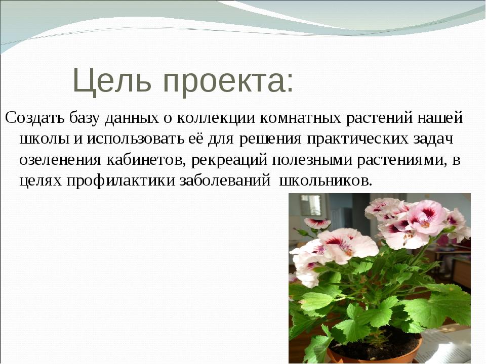 Цель проекта: Создать базу данных о коллекции комнатных растений нашей школы...