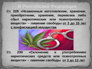 Ст. 228 «Незаконные изготовление, хранение, приобретение, хранение, перевозка