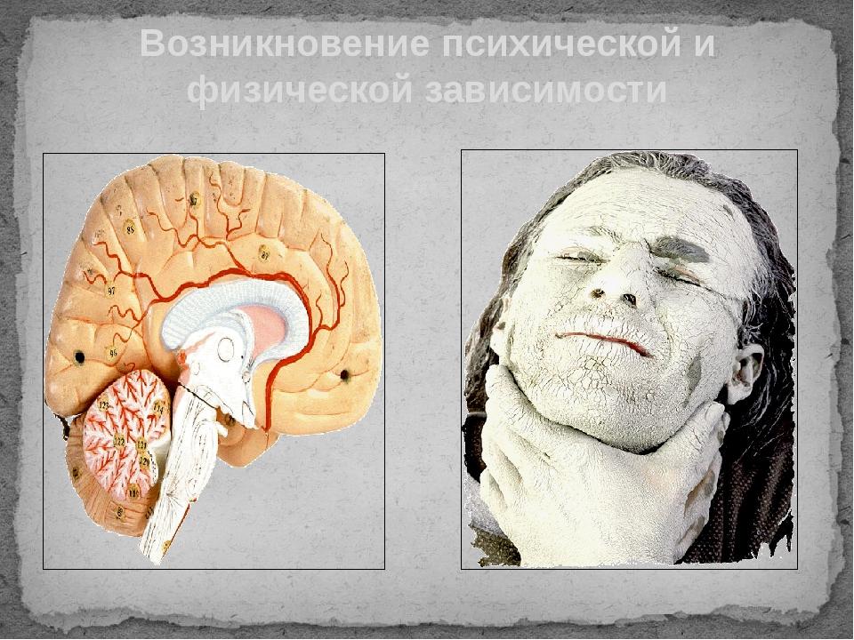 Возникновение психической и физической зависимости