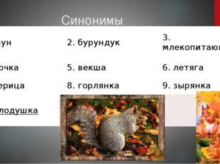Синонимы 1грызун 2.бурундук 3.млекопитающее 4.белочка 5.векша 6.летяга