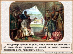 Владимир пришел в ужас, когда дошла до него весть об этом. Опять призвал он к