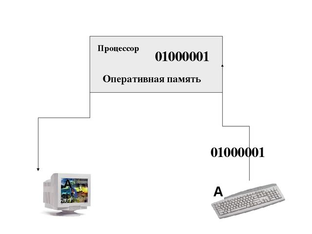01000001 Оперативная память А А 01000001 Процессор