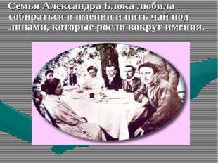Семья Александра Блока любила собираться в имении и пить чай под липами, кот