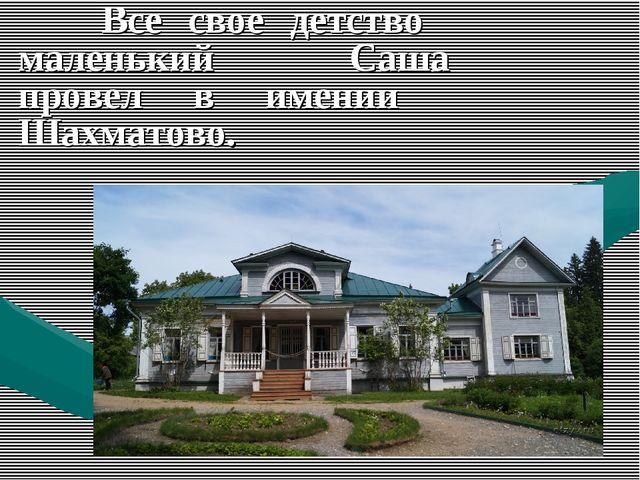 Все свое детство маленький Саша провел в имении Шахматово.