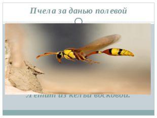Пчела за данью полевой Летит из кельи восковой.