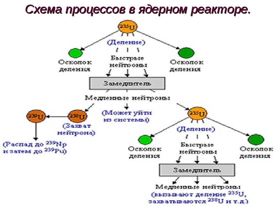 Схема процессов в ядерном реакторе.