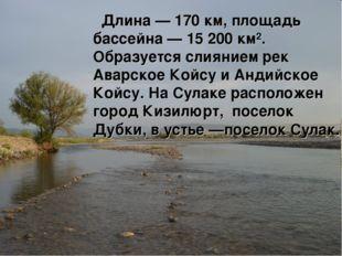Длина — 170 км, площадь бассейна — 15 200 км². Образуется слиянием рек Аварс