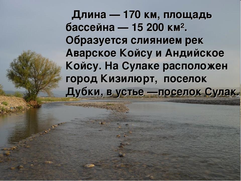 Длина — 170 км, площадь бассейна — 15 200 км². Образуется слиянием рек Аварс...