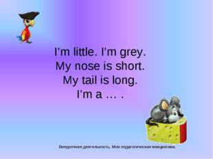Внеурочная деятельность. Моя педагогическая инициатива. I'm little. I'm grey.