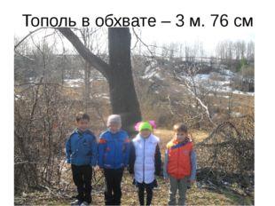 Тополь в обхвате – 3 м. 76 см