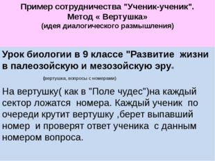 """Пример сотрудничества """"Ученик-ученик"""". Метод « Вертушка» (идея диалогическог"""