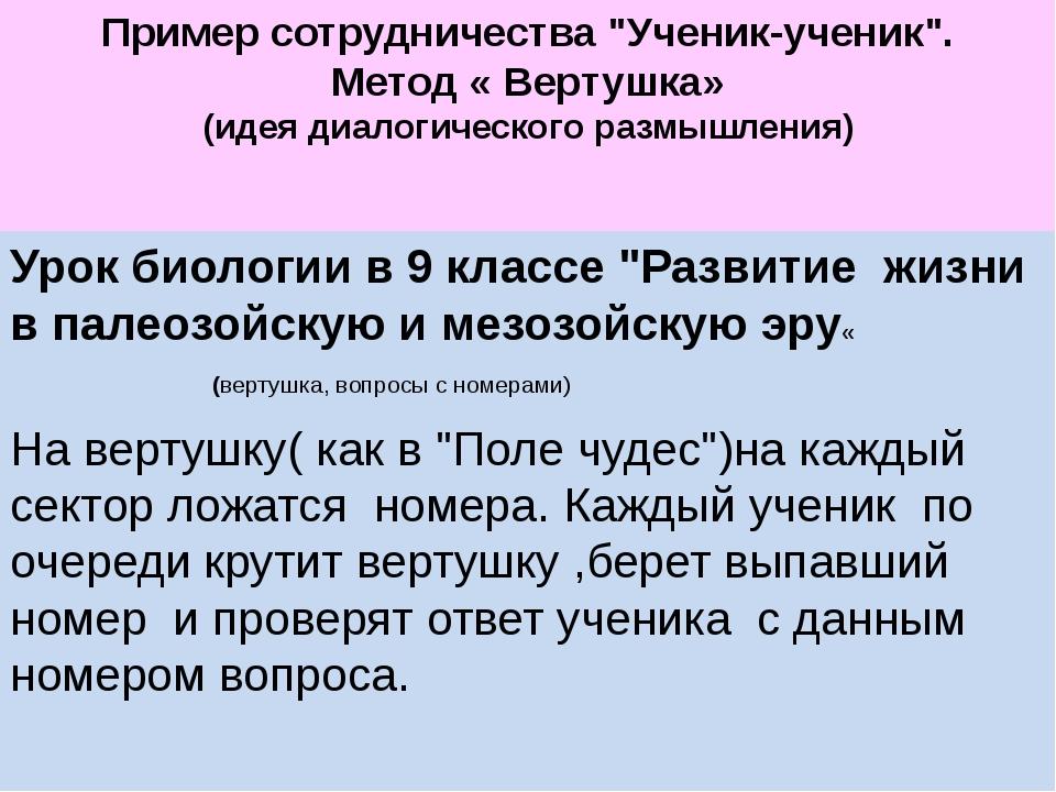 """Пример сотрудничества """"Ученик-ученик"""". Метод « Вертушка» (идея диалогическог..."""