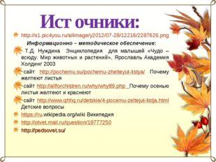 Источники: http://s1.pic4you.ru/allimage/y2012/07-28/12216/2287626.png Информ