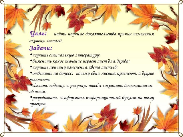 Цель: найти научные доказательства причин изменения окраски листьев. Задачи:...