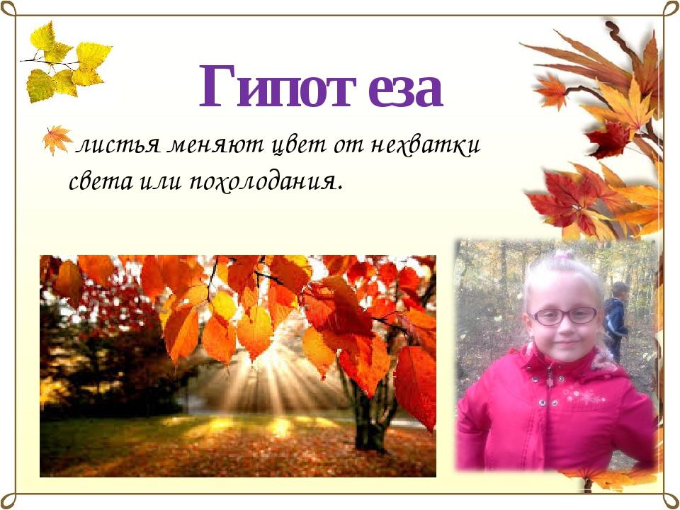 Гипотеза листья меняют цвет от нехватки света или похолодания.