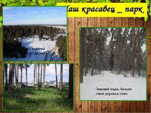 Наш красавец _ парк Парк с высоты птичьего полета Зимний парк, белым сном дер