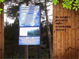На въезды и выезды из парка установлены аншлаги
