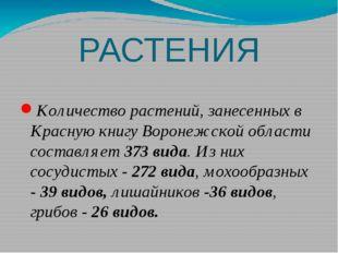 РАСТЕНИЯ Количество растений, занесенных в Красную книгу Воронежской области