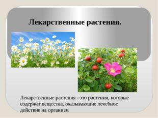 Лекарственные растения. Лекарственные растения –это растения, которые содержа