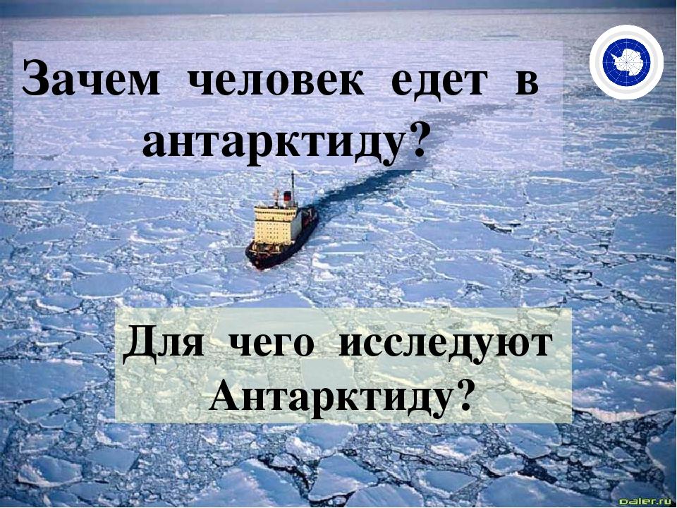 Зачем человек едет в антарктиду? Для чего исследуют Антарктиду?