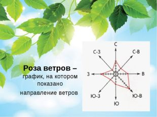 Роза ветров – график, на котором показано направление ветров