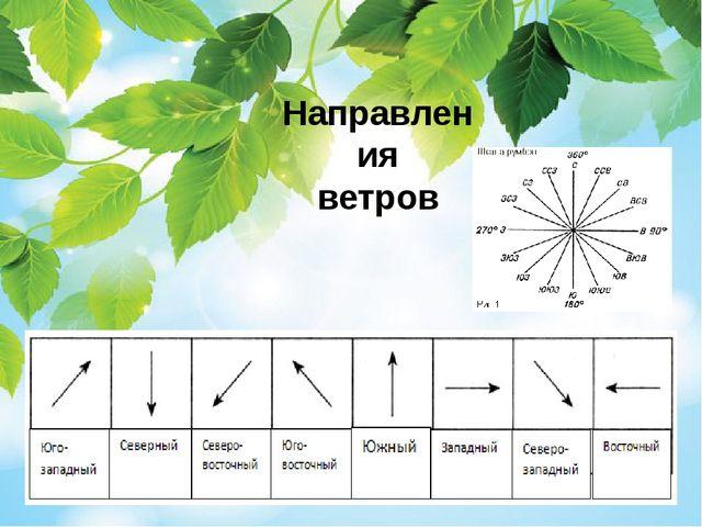 Направления ветров