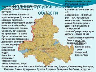 Водные русурсы Ростовской области Территория Ростовской области покрыта густо