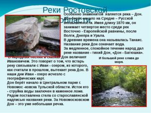 Реки Ростовской области Особенно знаменитой является река – Дон. Дон берёт на
