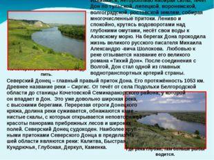Северский Донец – главный правый приток Дона. Его протяжённость 1053 км. Древ
