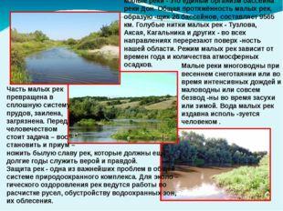 Малые реки многоводны при весеннем снеготаянии или во время интенсивных дожд