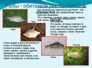 Очень богат и разнообразен мир обитателей рек. Количество видов рыб достигае