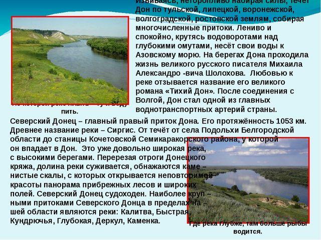 Северский Донец – главный правый приток Дона. Его протяжённость 1053 км. Древ...