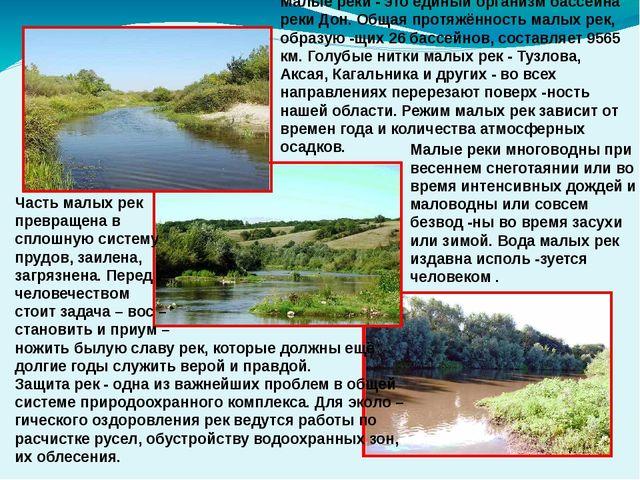 Малые реки многоводны при весеннем снеготаянии или во время интенсивных дожд...