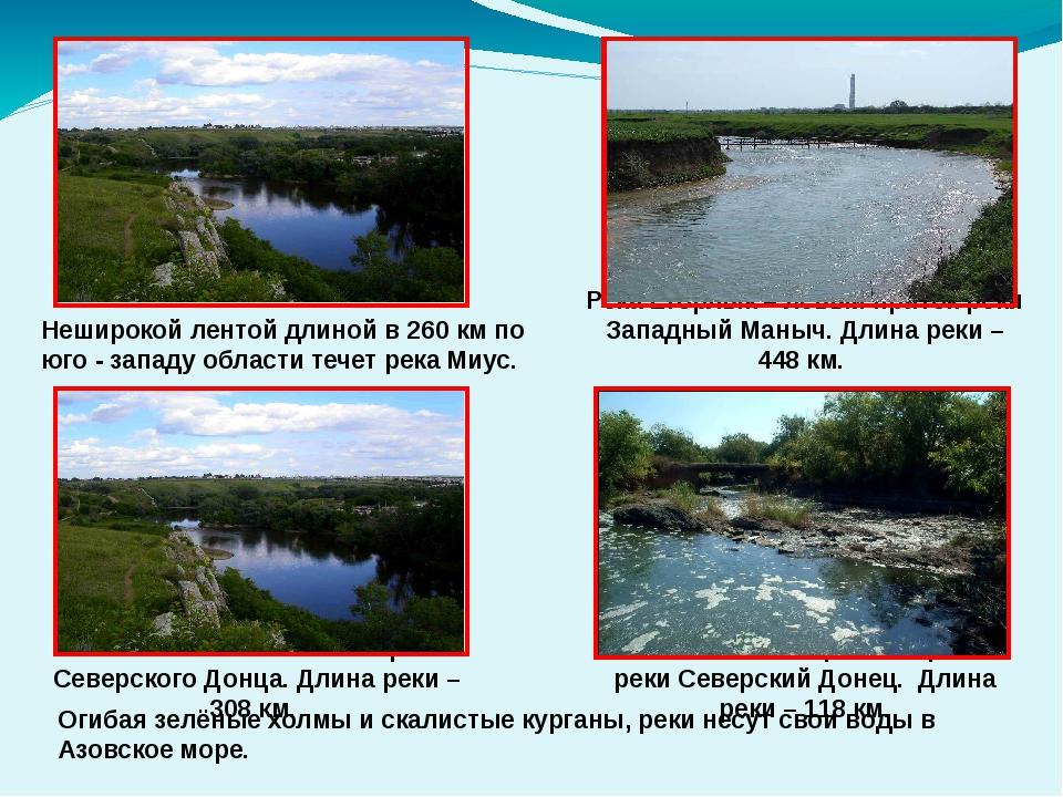 Река Калитва – основной приток Северского Донца. Длина реки – 308 км. Река Е...