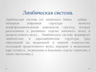 Лимбическая система. Лимбическая система (от латинского limbus - кайма) - обш