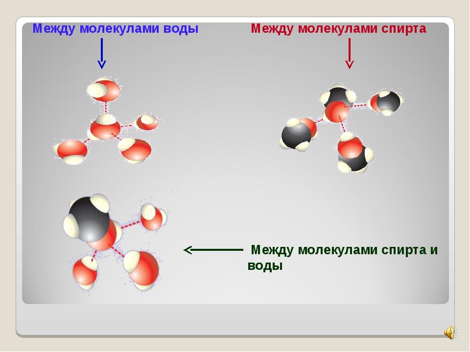 Между молекулами воды Между молекулами спирта Между молекулами спирта и воды