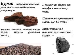 Переходная форма от торфа к каменному углю. Плотность органической массы 1,2
