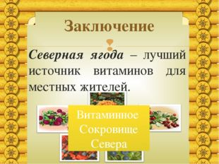 Северная ягода – лучший источник витаминов для местных жителей. Заключение Ви