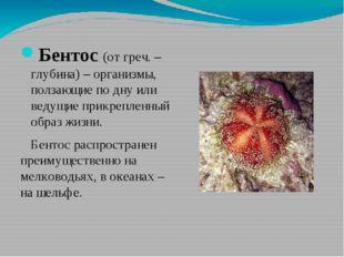 Бентос (от греч. – глубина) – организмы, ползающие по дну или ведущие прикре