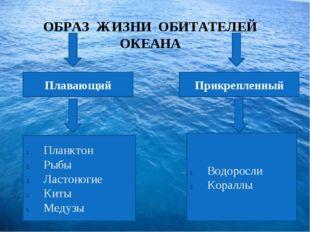 ОБРАЗ ЖИЗНИ ОБИТАТЕЛЕЙ ОКЕАНА Плавающий Прикрепленный Планктон Рыбы Ластоног