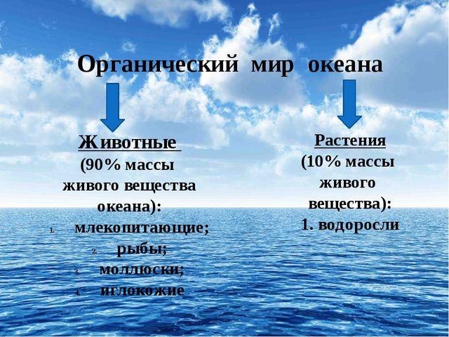 Органический мир океана Животные (90% массы живого вещества океана): млекопи...