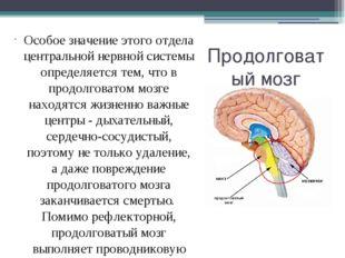 Продолговатый мозг Особое значение этого отдела центральной нервной системы о