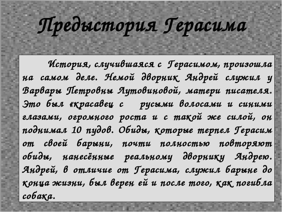 Предыстория Герасима История, случившаяся с Герасимом, произошла на самом дел...