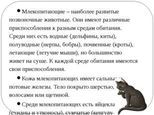 Млекопитающие – наиболее развитые позвоночные животные. Они имеют различные п