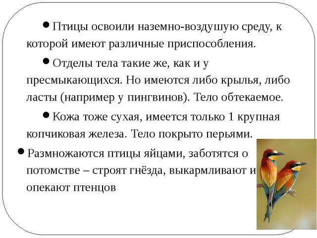 Птицы освоили наземно-воздушую среду, к которой имеют различные приспособлени...