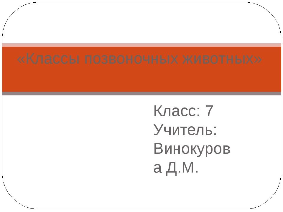 Класс: 7 Учитель: Винокурова Д.М. «Классы позвоночных животных»