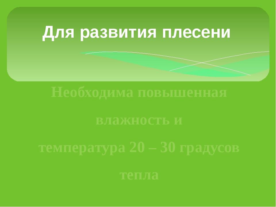 Дляразвития плесени Необходима повышенная влажность и температура 20 – 30 г...