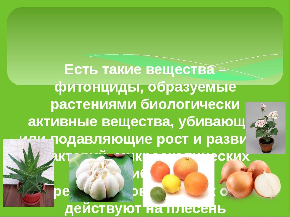 Есть такие вещества – фитонциды, образуемые растениями биологически активные...