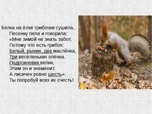 Белка на ёлке грибочки сушила,  Песенку пела и говорила:  «Мне зим